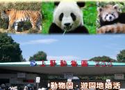 動物園遊園地