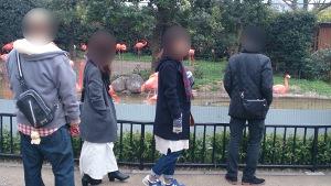 上野動物園での男女
