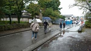 小江戸2回目グループ分け