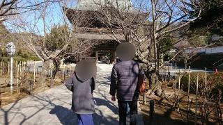 鎌倉散策イベント