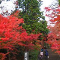 円覚寺-紅葉
