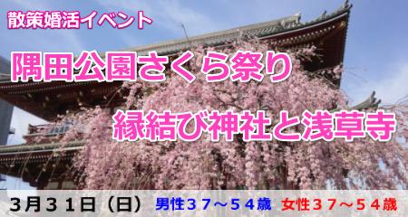 190331【浅草・散策婚活】隅田公園さくら祭り社と浅草寺