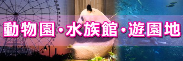 動物園・水族館・遊園地婚活